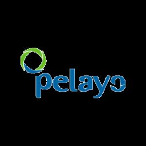 PELAYO-removebg-preview
